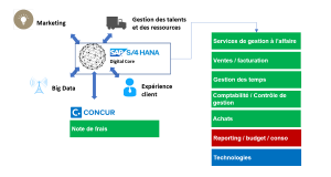 gestion ESN consulting ERP SAP